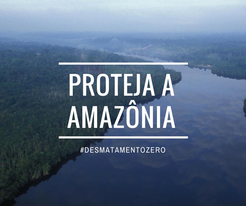 Amaznia1.3_1.png